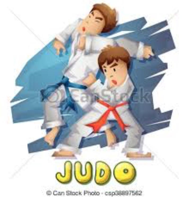 Progetto Judo